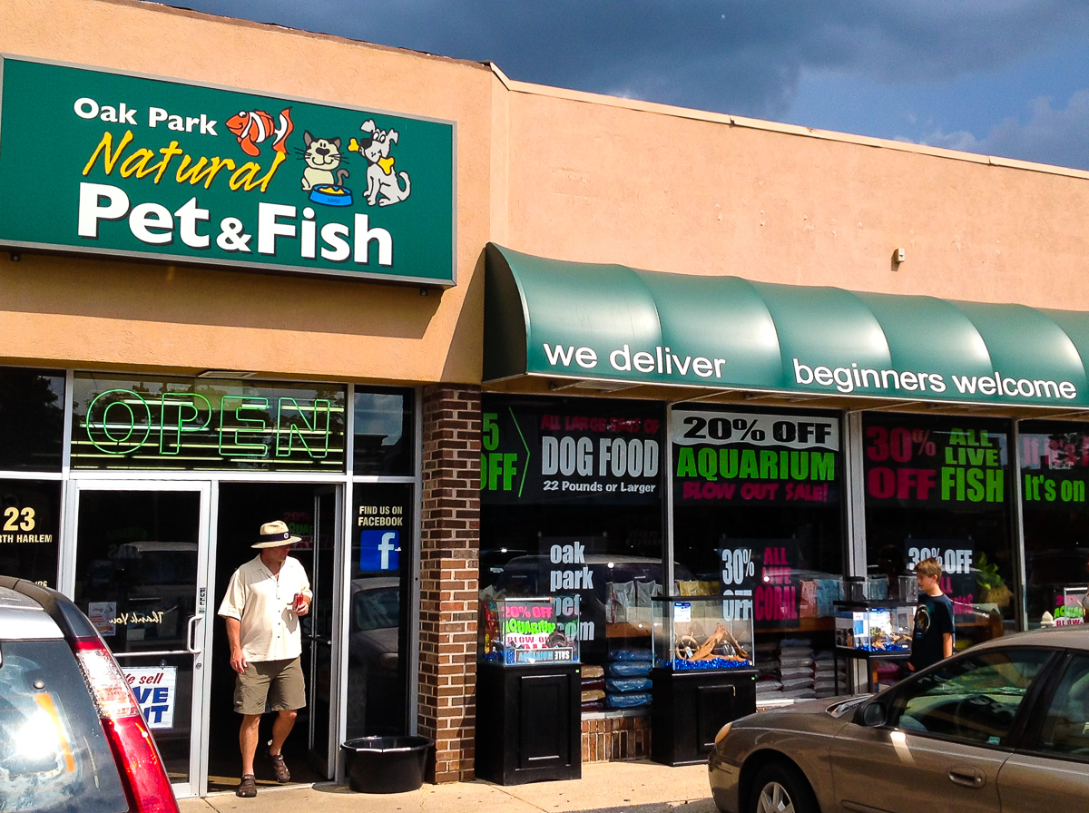 fish help chicago our store